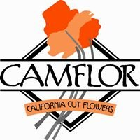 CamFlor Inc