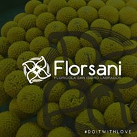 Florsani