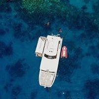 Hastings Reef - Cairns - Great Barrier Reef