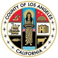 Los Angeles County Management Fellows Program