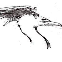 Heron Crest Studios