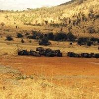 Kwa Maritana Lodge - Pilanesburg.