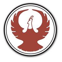 Phoenix Systems & Service, Inc.