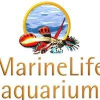 MarineLife Aquarium
