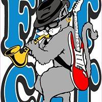 Fat Cat Music & Sound