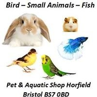 Everyday Pet & Aquatics Bristol