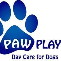 Paw Play