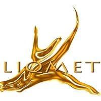 Liqmet - Liquid Metals Coatings