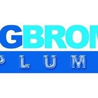 DG Bromfield Plumbing