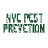 NYC Pest Prevention