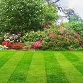 H & F landscaping