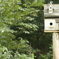The Garden Guru - horticulturist, landscape designer