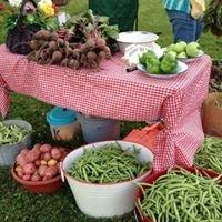Pittsboro Farmer's Market