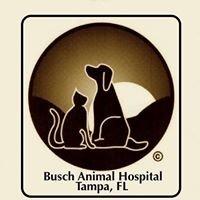 Busch Animal Hospital