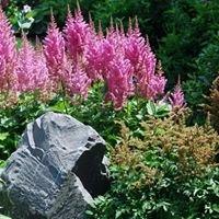 Bancroft Landscaping
