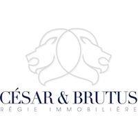 César et Brutus Immobilier