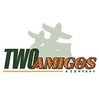 Two Amigos Moving & Storage Company