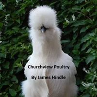 Churchview Poultry