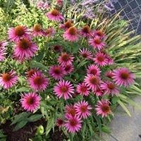 Eastman and Friends Garden Center