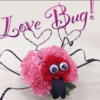 The Love Bug Flowers-Timmins