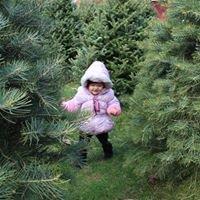 Fleming's Christmas Tree Farms