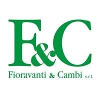 Fioravanti & Cambi SRL