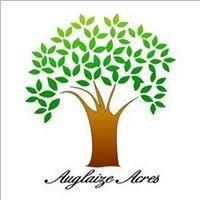 Auglaize Acres Nursing Home