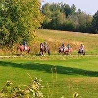 Horseplay Farm