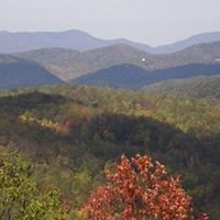 LUXURY Homes in Asheville NC