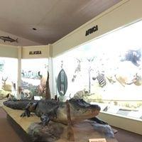 Rankin Museum of American Heritage