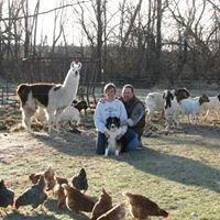 Seven Pines Farm