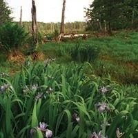 Norfolk, CT Conservation Commission