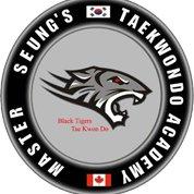 Black Tigers Taekwondo Martial Arts School