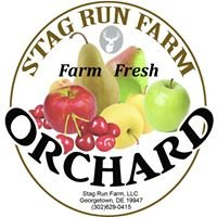 Stag Run Farm