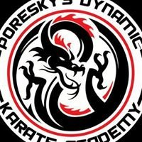 Poresky's Dynamic Karate Academy, Iron Dragon MMA
