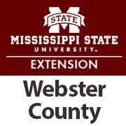 Webster Extension