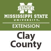 Clay Extension