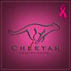 Cheetah E-Racing Unifei