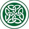 Irish Electric Corp