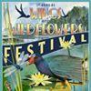 Birding in Lake FL