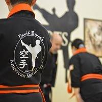 David Bruce's American Martial Arts