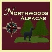 Northwoods Alpacas