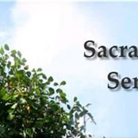 Sacramento Tree Service Guys