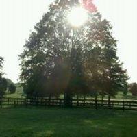 Rainbow Acres LLC Equine Wellness Center