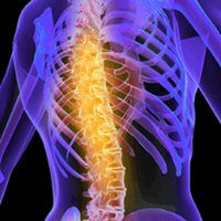Maui Spinal Care - Dr Alejandro Lazo, DC