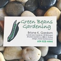 Green Beans Gardening