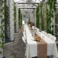 Beyond Organic Growers