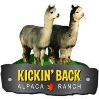Kickin' Back Alpaca Ranch