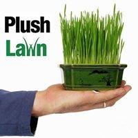 Plush Lawn, LLC