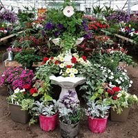 Wagner's Landscaping & Greenhouse